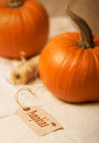 Pumpkin Label. With gourds and twine in the background stock image