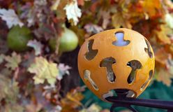 Pumpkin lantern with carved mushroom silhouettes stock photo