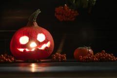Pumpkin lantern lighting on a dark background. Orange pumpkin lantern with a scary face for halloween holiday lighting on a dark background with rowanberry next royalty free stock photos