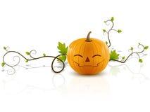 Pumpkin laughs2 Royalty Free Stock Image