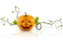 Pumpkin laughs Royalty Free Stock Photos