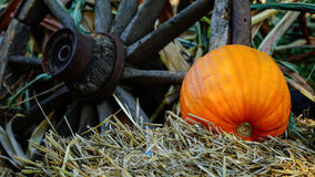 Pumpkin laying in hay Royalty Free Stock Images