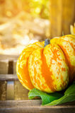 Pumpkin with leaf on a wooden table Stock Photos