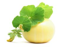 Pumpkin with leaves Royalty Free Stock Photos