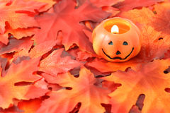 Pumpkin and leaves Royalty Free Stock Images