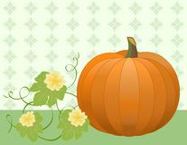 Pumpkin With Leaves and Flowers Stock Photos