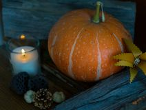 Pumpkin with lit candle and autumn decor, side view. Wooden decorations. For Halloween Stock Photography