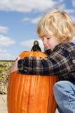 Pumpkin Love Stock Photos