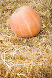 Pumpkin lying on haystack Royalty Free Stock Photos
