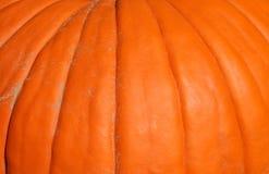 Pumpkin, macro. Closeup of a bright pumpkin stock images