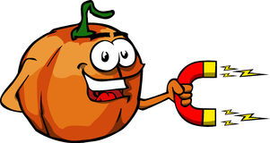 Pumpkin with magnet Stock Image