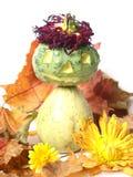 Pumpkin Man Royalty Free Stock Image