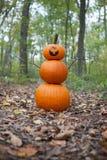 Pumpkin man stock photo