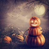 Pumpkin man Royalty Free Stock Image