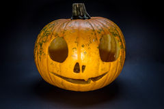 Pumpkin man. Head with pumpkin on Halloween Royalty Free Stock Photos