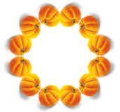 Pumpkin mandala. Orange pumpkin mandala Royalty Free Stock Photos