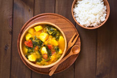 Pumpkin, Mangold and Potato Curry Royalty Free Stock Images