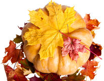 Pumpkin and many maple leaves Royalty Free Stock Image