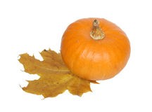 Pumpkin and maple leaf. Stock Photos