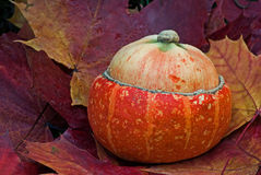Pumpkin and maple leaves Royalty Free Stock Photography