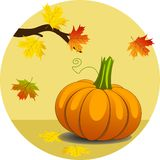 Pumpkin with Maple Leaves Stock Image