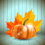 Pumpkin and maple leaves  - illustration Royalty Free Stock Photos