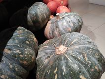Pumpkin from the market that is fresh and looks clean from pests royalty free stock image
