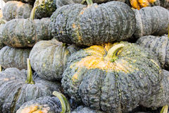 Pumpkin in market Royalty Free Stock Image
