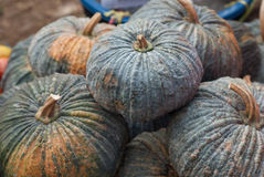 Pumpkin at market, Thailand Stock Photography