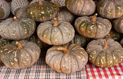 Pumpkin in market, Thailand Royalty Free Stock Image