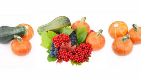Pumpkin, marrow, guelder-rose berries with grapes Stock Photos