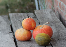 Pumpkin and melon. orange pumpkin and yellow melon on the wooden Stock Photo