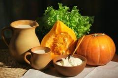 Free Pumpkin, Milk, Sour Cream Stock Photos - 6827413