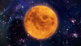 Pumpkin moon Halloween. Pumpkin orange color of the Halloween moon stock footage