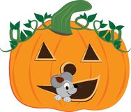 Pumpkin Mouse Royalty Free Stock Photography