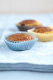Pumpkin Muffin Royalty Free Stock Images