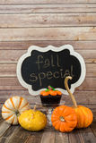 Pumpkin muffin with ornamental gourds and chalkboard sign Royalty Free Stock Image