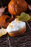 Pumpkin muffin with whipped cream Stock Photos