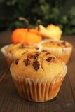 Pumpkin muffins Royalty Free Stock Photos