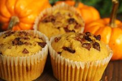 Pumpkin muffins royalty free stock photography