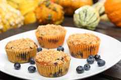 Pumpkin muffins with cranberries on the plate Stock Photo