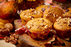 Pumpkin muffins. With nuts, flowers  and pumpkin in background Royalty Free Stock Photos