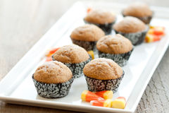 Pumpkin muffins on a tray. 8 miniature pumpkin muffins rest on a white platter with orange and yellow candy corns. The wrappers are black with white scroll Royalty Free Stock Photos