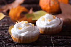 Pumpkin muffins with whipped cream. On dark wooden background Stock Photo