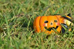 Pumpkin mug on grass. Smiling pumpkin mug is on grass Royalty Free Stock Images