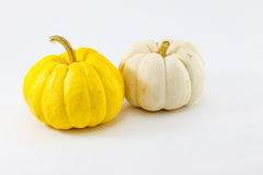 """Pumpkin name """" Jack be little """" of yellow and white color on white background. Stock Image"""