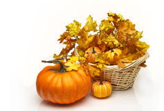 Pumpkin near a basket of leaves and pumpkins Royalty Free Stock Photos