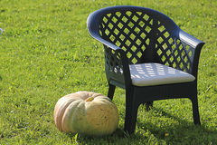 Pumpkin is next to country chair on green grass Royalty Free Stock Image