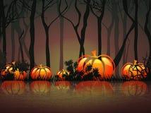 Pumpkin Night Lake Stock Image