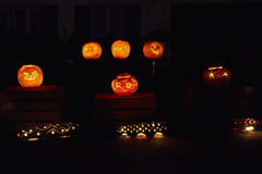 Pumpkin night party Royalty Free Stock Photos